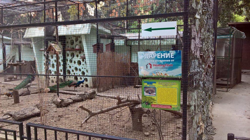 Heating Floor направи дарение на варненската зоологическа градина